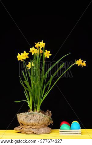Flowers In Sackcloth Pot On Yellow Table By Easter Eggs.