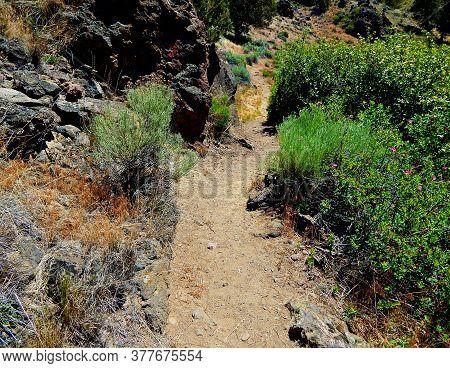 Rocky Desert Hike - The Riverside Trail At Borden Beck Wildlife Preserve - West Of Terrebonne, Or