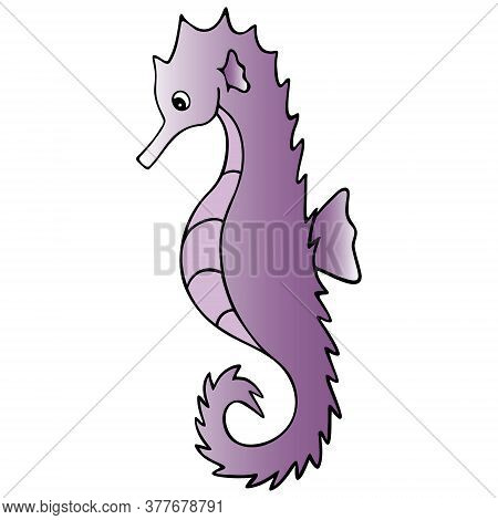 Sea Horse. Colored Vector Illustration. White Isolated Background. Ocean Dweller. Cartoon Style. Fis
