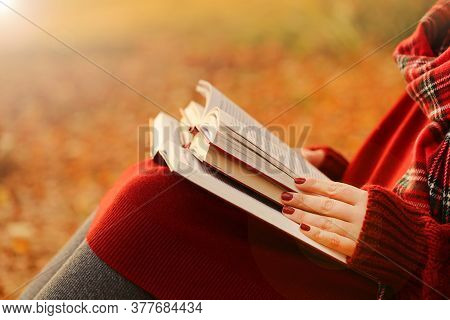 World Book Day. Reading Books Concept. Autumn Books..back To School. Culture And Knowledge Concept.l