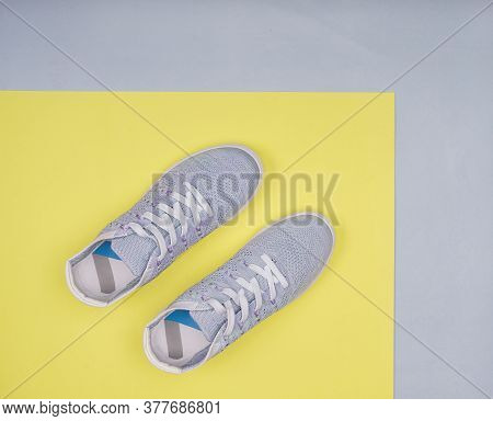 Female Sport Shoes Top View With Copy Space. Workout.
