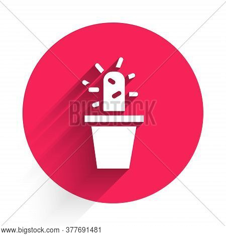White Cactus And Succulent In Pot Icon Isolated With Long Shadow. Plant Growing In A Pot. Potted Pla