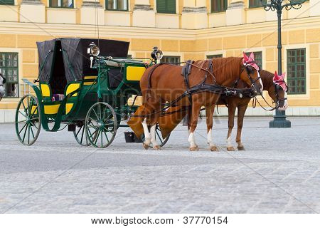 Carriage with horses for hire in Vienna Austria in front of Schonbrunn Palace poster