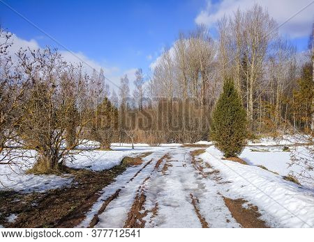 Spring Landscape With Melting Snow On Footpath, Blue Sky And Forest In Countryside