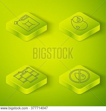 Set Isometric Bio Fuel, Barrel Oil, No Oil Drop And Canister For Gasoline Icon. Vector