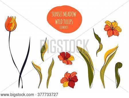 Yellow Tulips Field Line Art Illustration In The Scandinavian Style
