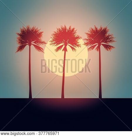 An illustration of a beautiful palm trees sunset background