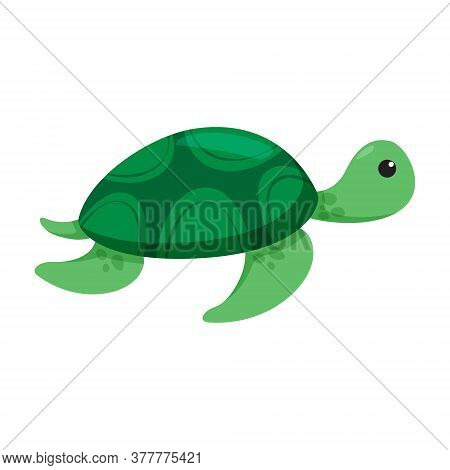 Turtle Isolated On White Background. Vector Flat Cartoon Color Icon With Emotions. Hand Drawn Sketch