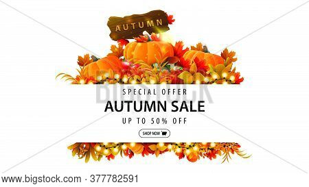 Special Offer, Autumn Sale, Up To 50% Off, White Discount Banner With Frame Of Autumn Leaves And Aut