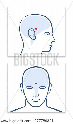 Pineal Gland Or Third Eye. Lateral And Frontal View With Position In The Human Brain. Isolated Vecto