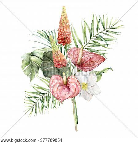 Watercolor Tropical Bouquet With Anthurium, Lupine, Plumeria And Palm Leaves. Hand Painted Tropical