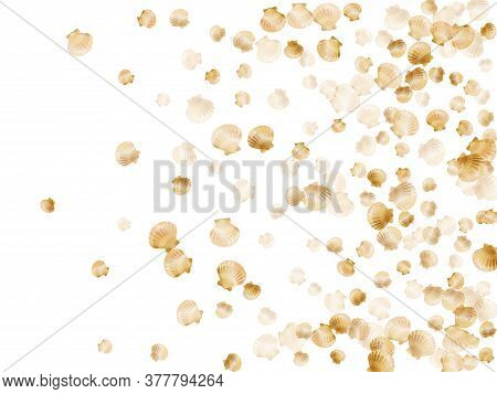 Gold Seashells Vector, Golden Pearl Bivalved Mollusks. Cute Scallop, Bivalve Pearl Shell, Marine Mol