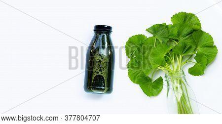 Gotu Kola Leafs Juice Drink For Health On White Background