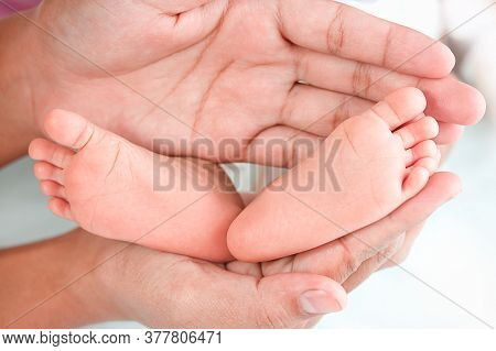 Newborn Baby Feet On The Hands Of The Mother