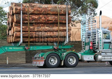 Geelong, Australia - April 7, 2007: Articulated Semi Truck To Transport A Cargo Of Just Cut Logs.