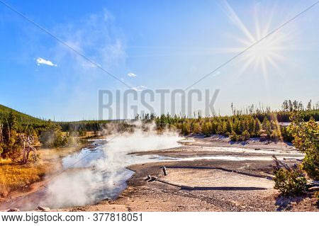 Hot Steam Rises From A Geyser In Norris Geyser Basin At Yellowstone National Park, Wyoming, Usa, Wit