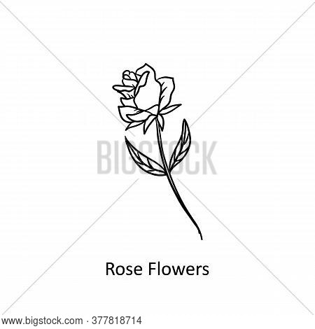 Simple Line Rose Icon Isolated On White Background. Rose Icon Trendy And Modern. Rose Icon Simple Si
