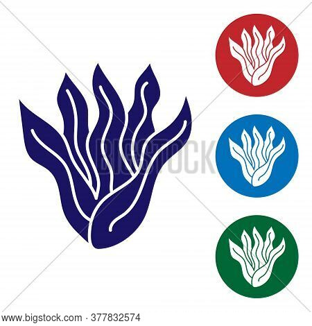 Blue Seaweed Icon Isolated On White Background. Underwater Seaweed Spirulina, Aquatic Marine Algae P