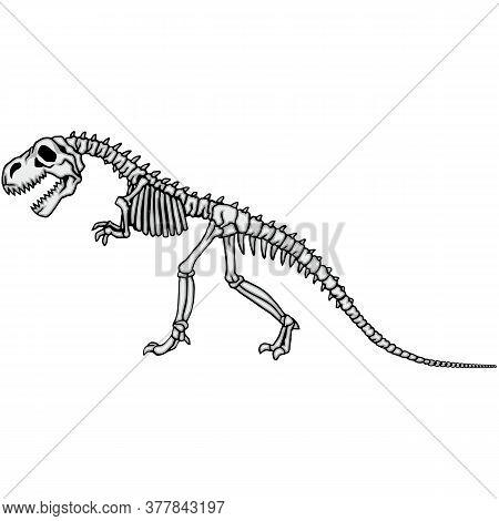 Dinosaur Skeleton.eps
