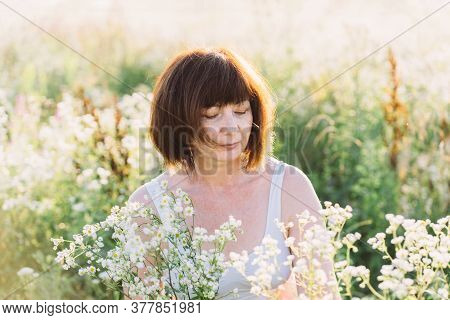 Middle Aged Mature Red Haired Woman Picking Wild Daisy Flowers In Field. Elderly Female In A Meadow