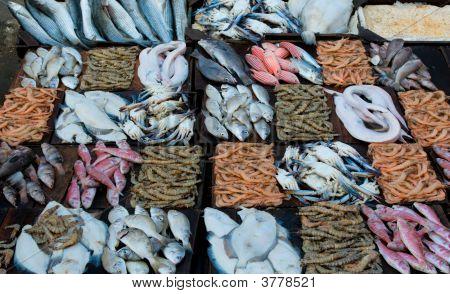 frische Meeresfrüchte auf ein Fischmarkt
