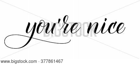 Modern Handwritten Brush Calligraphy You Are Nice. Vector Illustration.