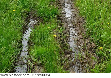 Deep, Impassable Mud, Puddles And Slush On A Dirt Road Among Green Grass. Danger Of Getting Stuck.