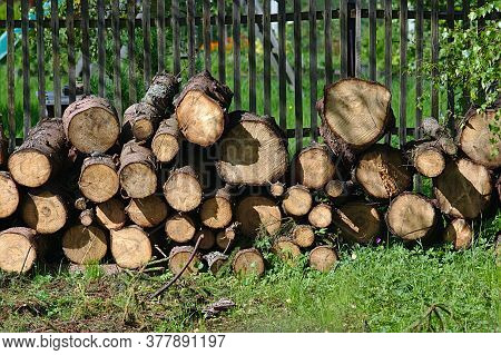 Sawn Spruce Wood Stacked In A Woodpile