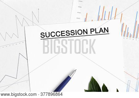 Succession Plan Document With Graphs, Diagrams And Blue Pen