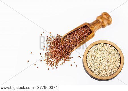 Chenopodium Quinoa - Red And White Quinoa Seeds