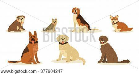 Set  Cute  Happy Dog  Breed. German Shepherd, Golden Retrieve, Beagle, Yorkshire Terrier, Pembroke C