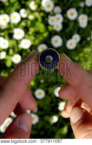 Fingers Holding Small Round Object, White Flowers And Green Leaves Blurred In Background, Human Tact