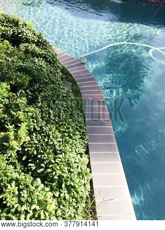Backyard Swimmimg Pool Modern Design And Landscaping On Sunny Day