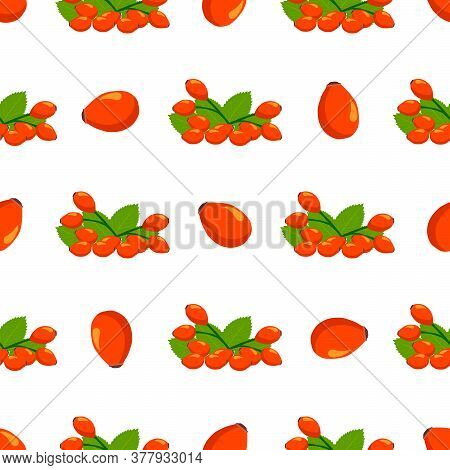 Illustration On Theme Big Colored Seamless Rose Hip, Bright Berry Pattern For Seal. Berry Pattern Co