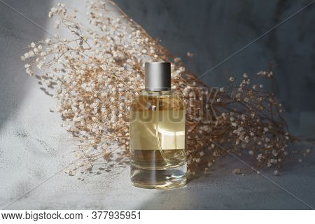Beautiful Transparent Fragrance Bottle From Glass In Contrast Light