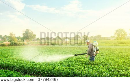 A Farmer With A Mist Blower Sprayer Walks Through The Potato Plantation. Use Chemicals In Agricultur