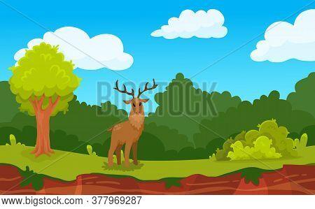 Forest Game Landscape Background With Deer And Wood Flat Vector Illustration