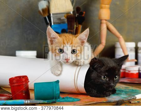 Two Lovely Mischievous Kittens Played Pranks On The Artist's Table Spilling A Can Of Paint