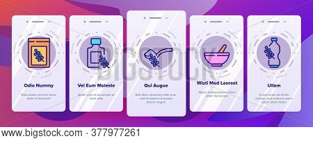 Thyme Plant Product Onboarding Mobile App Page Screen Vector. Thyme Branch And Aromatic Herb, Drink