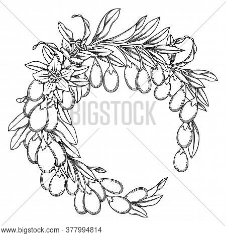 Graphic Goji Wreath Isolated On White Background