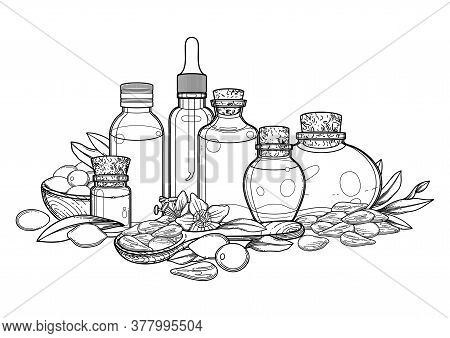 Group Of Graphic Essential Oil Bottles Decorated With Goji Berries, Leaves And Flowers.