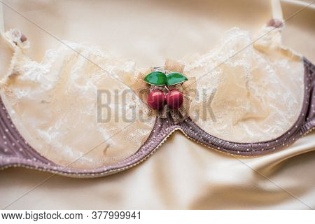 Vintage Lingerie For Ladies Beautiful And Tenderness Lingerie