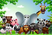 vector illustration of funny animal cartoon in the jungle poster
