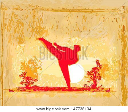 karate man silhouette Grunge poster on abstract background , vector poster