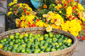 Yellow flowers and green limes
