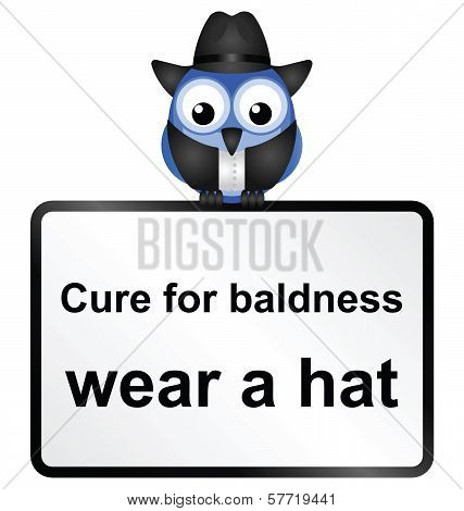 Comical cure for male baldness sign isolated on white background poster