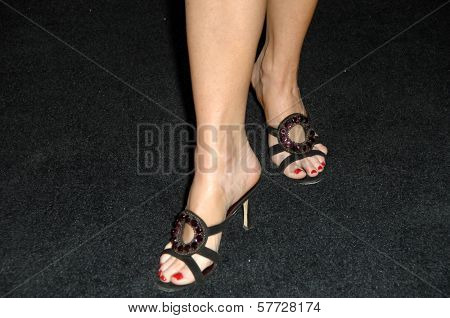 Jennifer Elise Cox's shoes at the 20th Annual GLAAD Media Awards. Nokia Theatre, Los Angeles, CA. 04-18-09