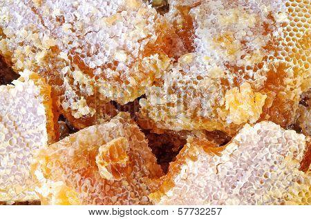 Honeycombs with honey