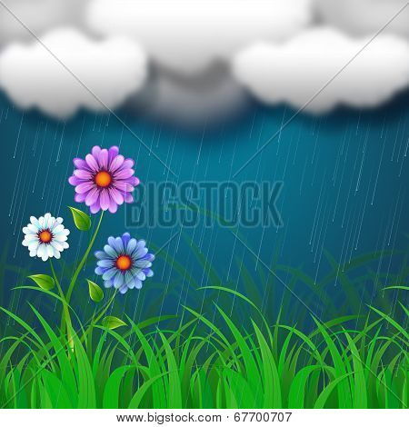Flowers Background Shows Clothes Pegs And Backdrop