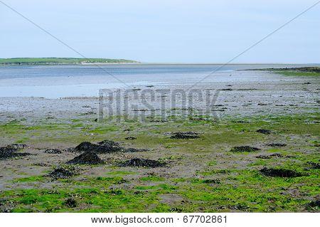 Beautiful Landscape In Co. Wexford